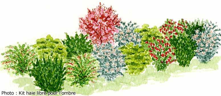 décoration : 22 Jardin Fleurie Toute L Annee ~ Bordeaux, Jardin ...