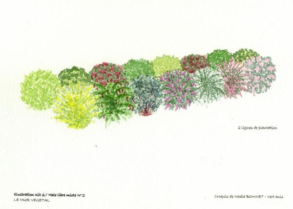 Kit haie libre fleurie mixte N°2
